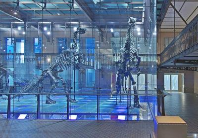 Очень интересно. Google запустил онлайн-экскурсии по 50 музеям мира