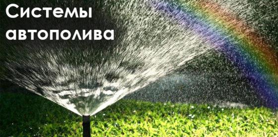 3 аспекта, которые укажут на то, чтобы заказать системы автополива в Киеве для вашего участка на сайте topiar.ua