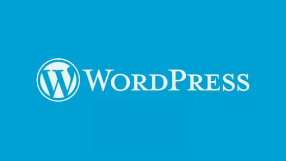 WordPress будет автоматически обновлять темы и плагины