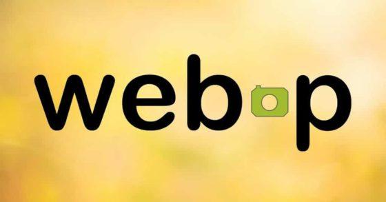 Google начал поддерживать формат .webp в разметке для логотипов
