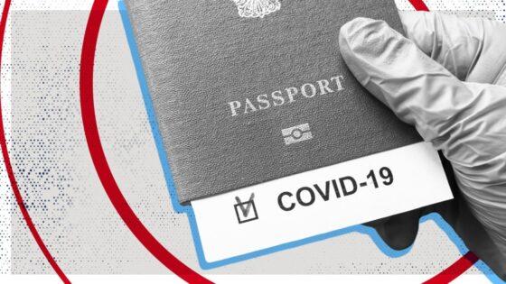 Паспорта вакцинации в «Дія»: когда появятся и как будут работать?